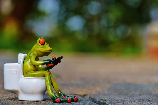 peeing in public frog toilet